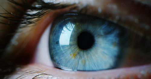 blue green eye close up